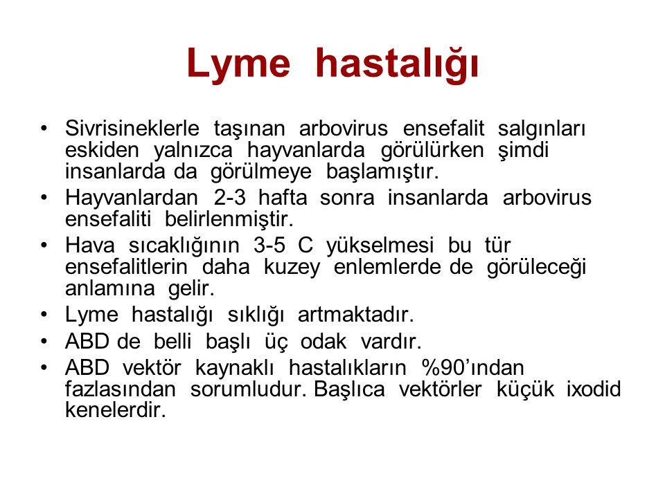 Lyme hastalığı