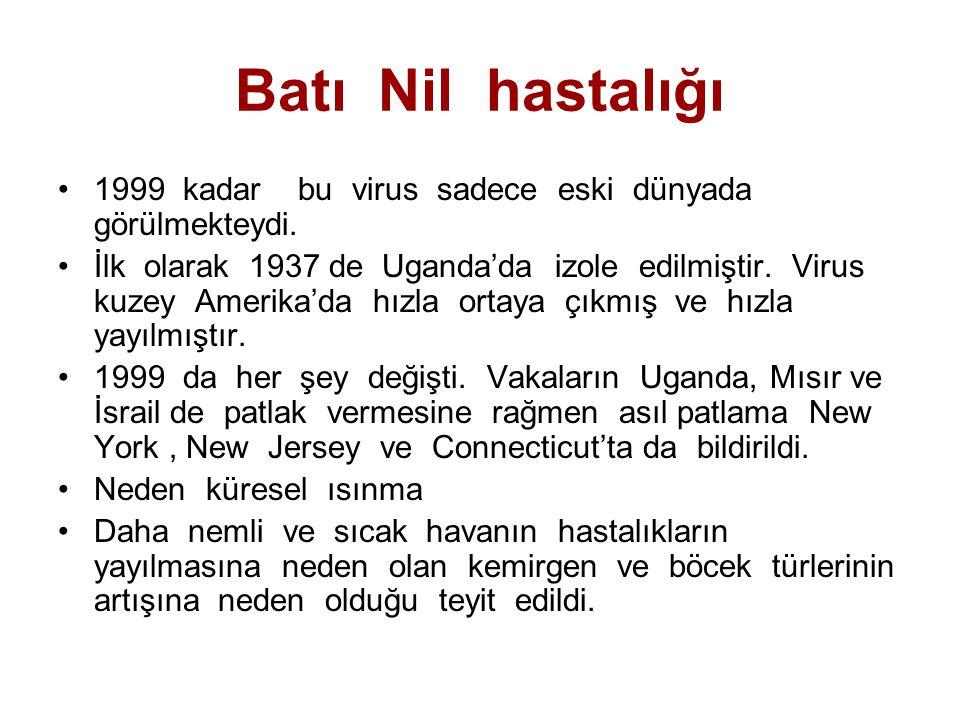 Batı Nil hastalığı 1999 kadar bu virus sadece eski dünyada görülmekteydi.