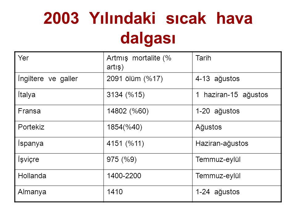 2003 Yılındaki sıcak hava dalgası