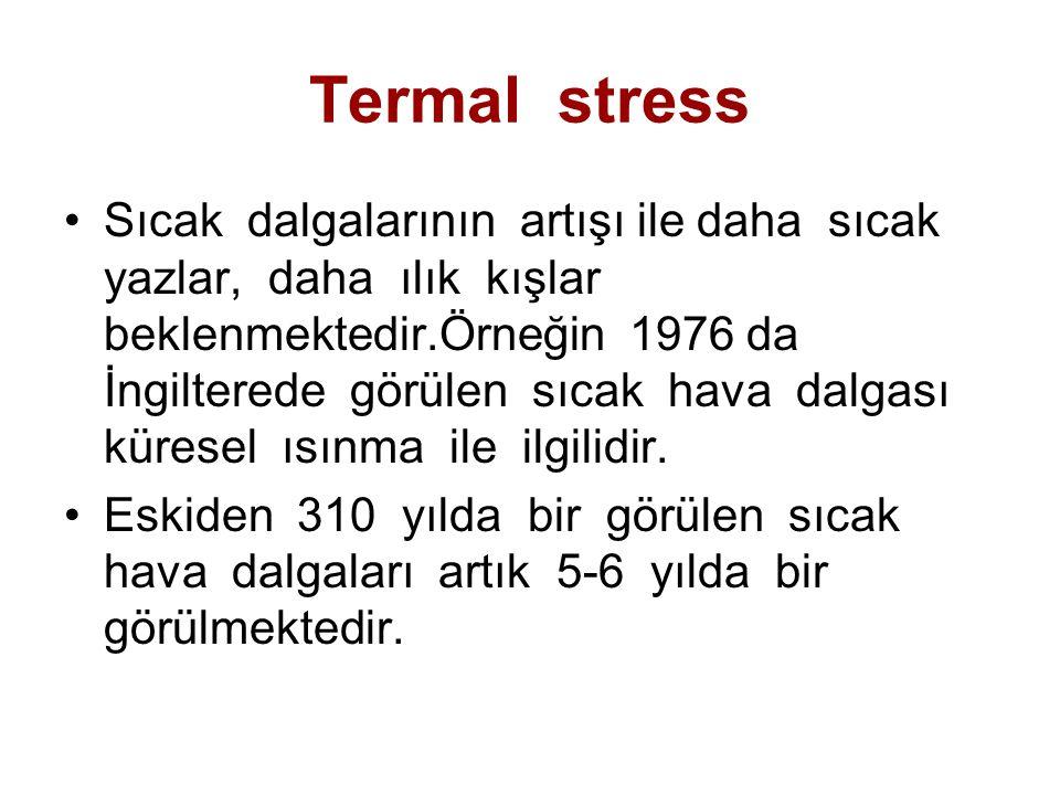 Termal stress