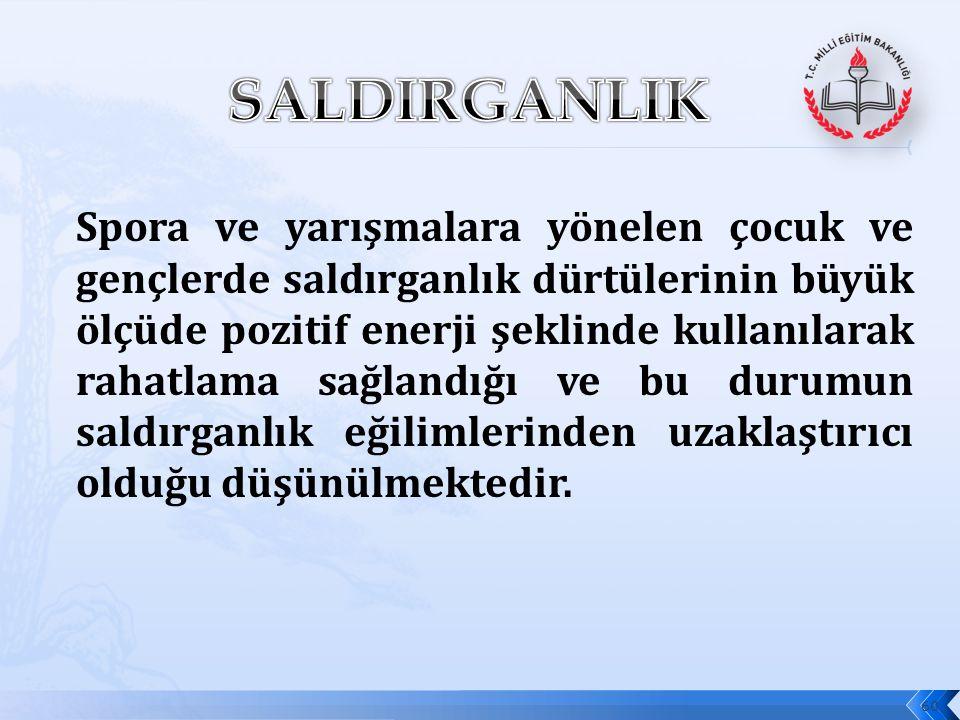 SALDIRGANLIK