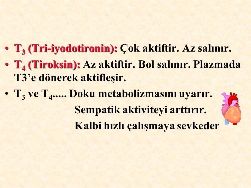 T3 (Tri-iyodotironin): Çok aktiftir. Az salınır.