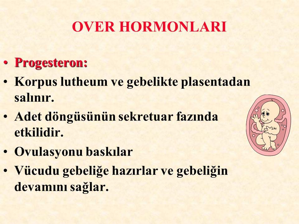 OVER HORMONLARI Progesteron: