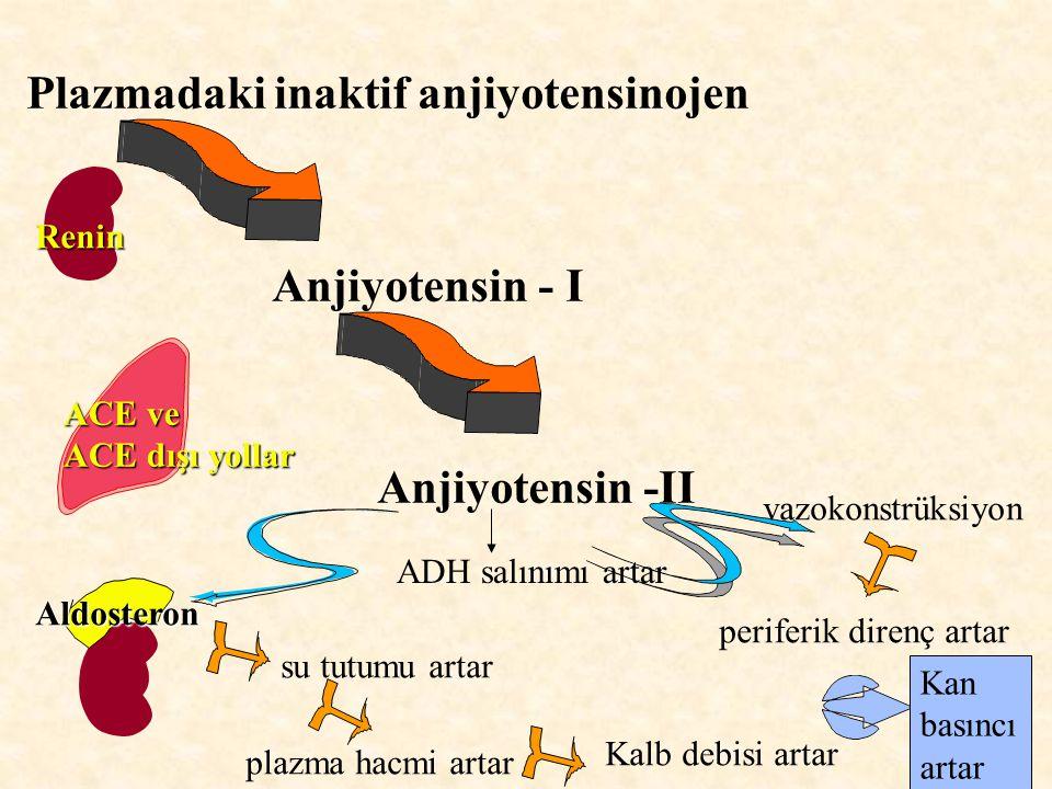Plazmadaki inaktif anjiyotensinojen