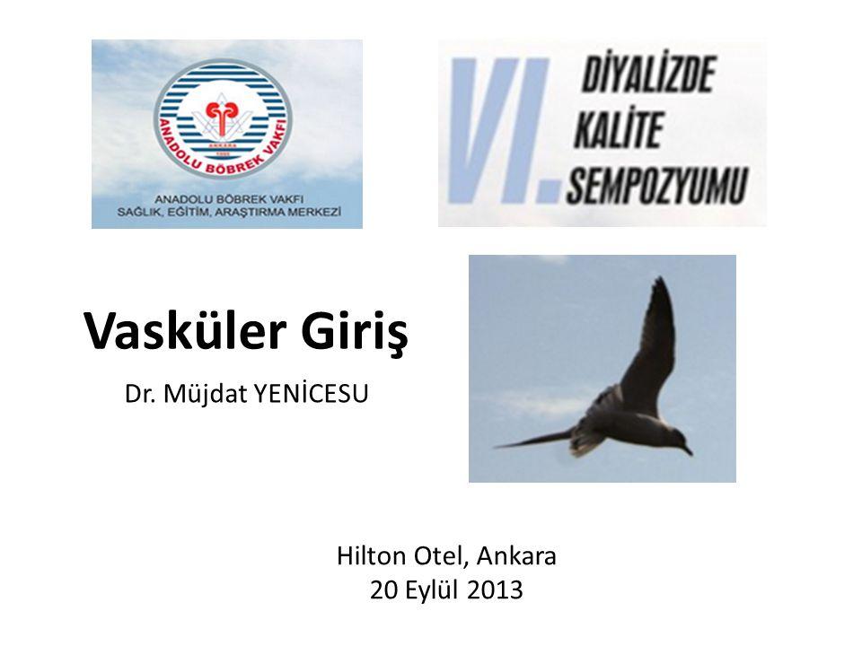 Vasküler Giriş Dr. Müjdat YENİCESU Hilton Otel, Ankara 20 Eylül 2013