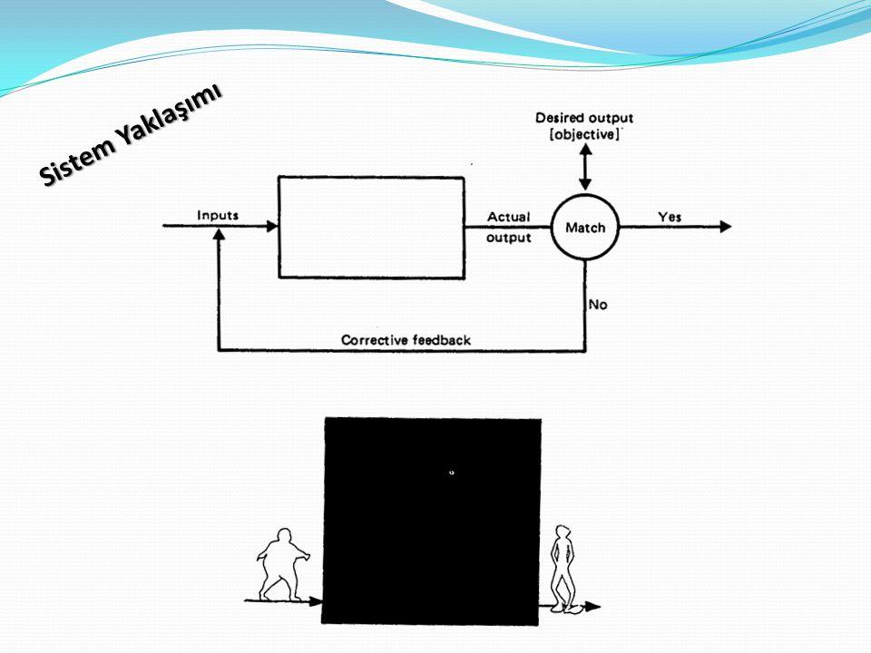 Sistem Yaklaşımı