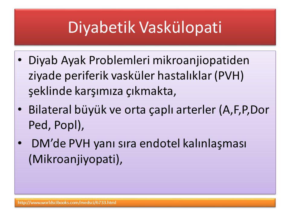 Diyabetik Vaskülopati