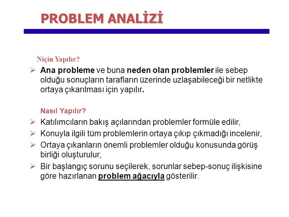 PROBLEM ANALİZİ Niçin Yapılır