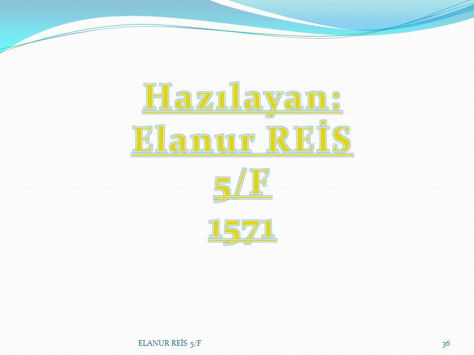 Hazılayan: Elanur REİS 5/F 1571