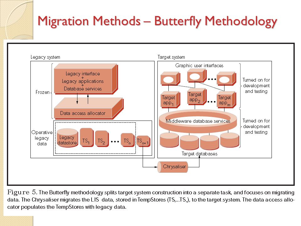 Migration Methods – Butterfly Methodology