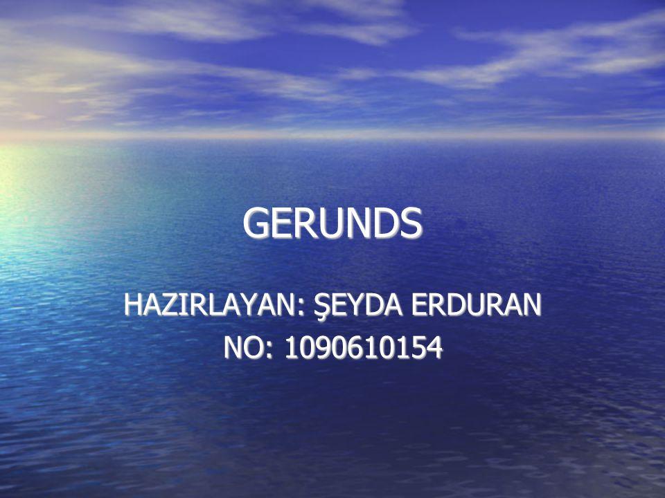HAZIRLAYAN: ŞEYDA ERDURAN NO: 1090610154