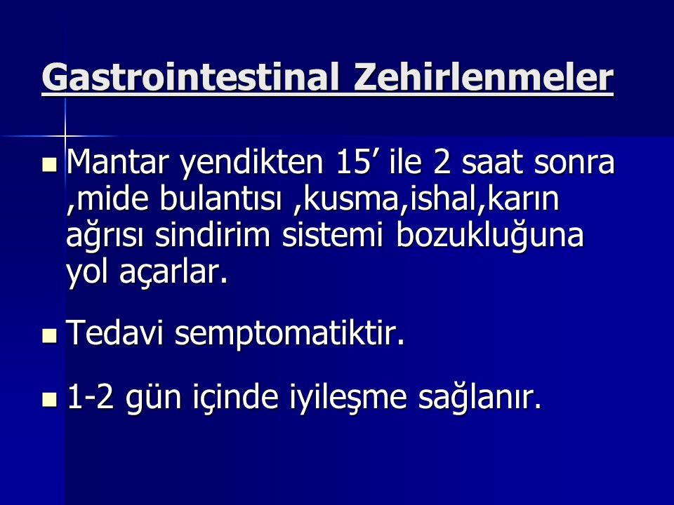 Gastrointestinal Zehirlenmeler