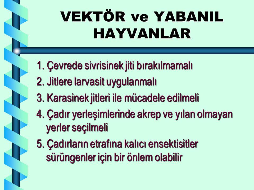 VEKTÖR ve YABANIL HAYVANLAR