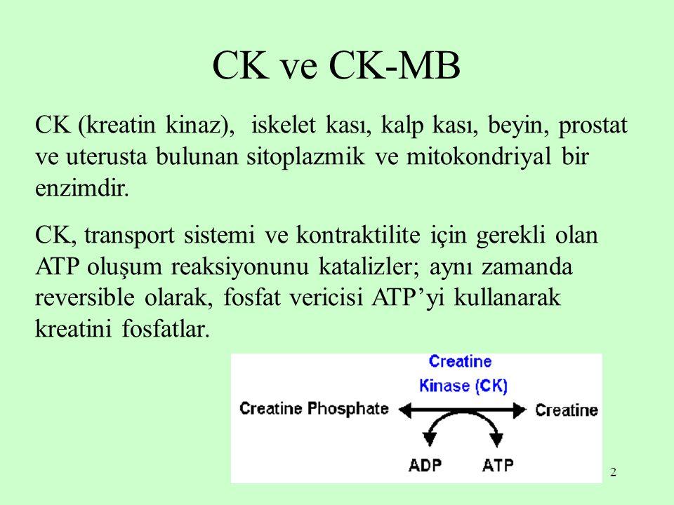 CK ve CK-MB CK (kreatin kinaz), iskelet kası, kalp kası, beyin, prostat ve uterusta bulunan sitoplazmik ve mitokondriyal bir enzimdir.