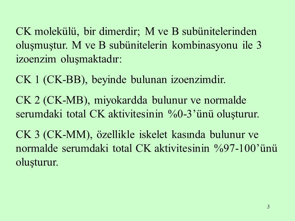 CK molekülü, bir dimerdir; M ve B subünitelerinden oluşmuştur