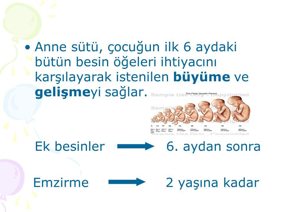Anne sütü, çocuğun ilk 6 aydaki bütün besin öğeleri ihtiyacını karşılayarak istenilen büyüme ve gelişmeyi sağlar.