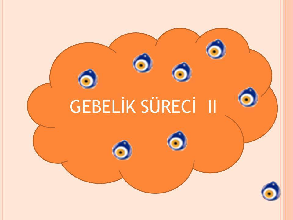 GEBELİK SÜRECİ II
