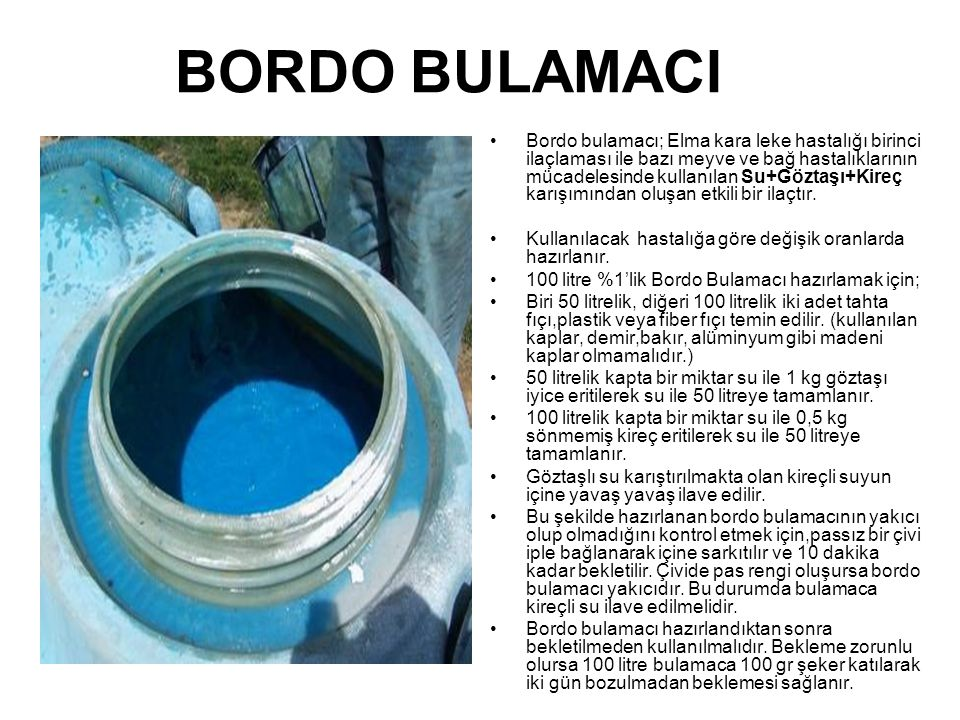 BORDO BULAMACI