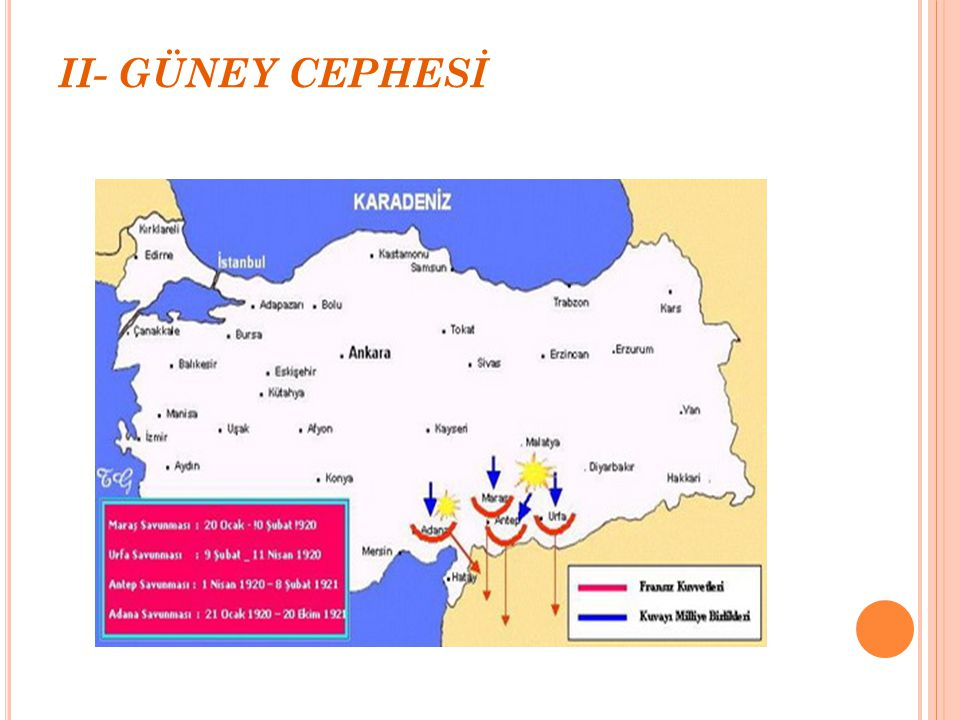II- GÜNEY CEPHESİ