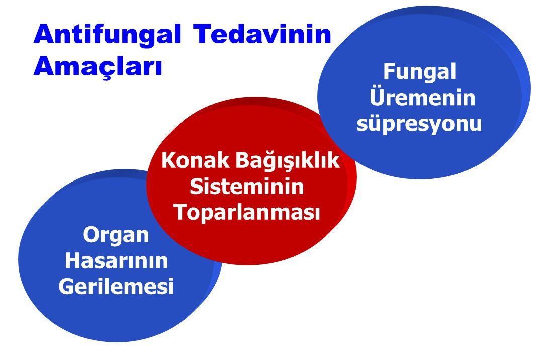 Antifungal Tedavinin Amaçları