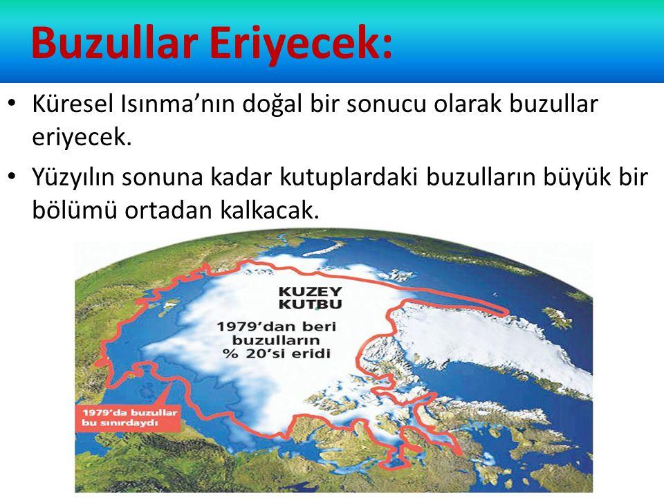 Buzullar Eriyecek: Küresel Isınma'nın doğal bir sonucu olarak buzullar eriyecek.