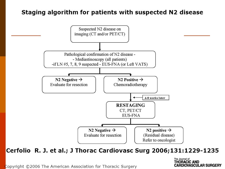 Staging algorithm for patients with suspected N2 disease
