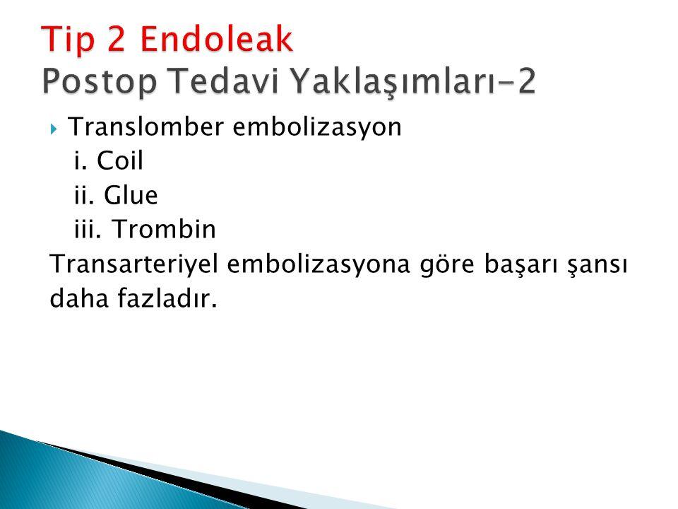 Tip 2 Endoleak Postop Tedavi Yaklaşımları-2