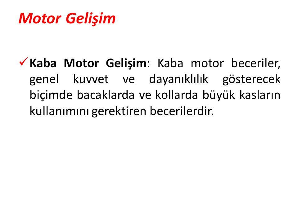 Motor Gelişim