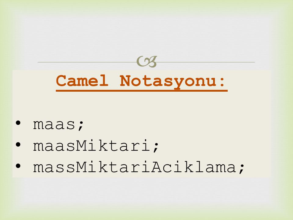 Camel Notasyonu: maas; maasMiktari; massMiktariAciklama;