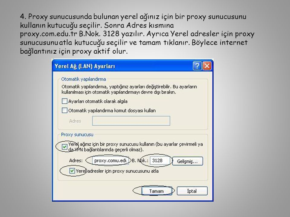 4. Proxy sunucusunda bulunan yerel ağınız için bir proxy sunucusunu kullanın kutucuğu seçilir.