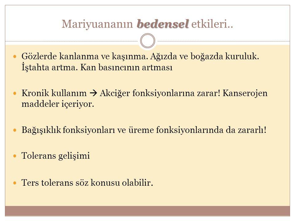 Mariyuananın bedensel etkileri..
