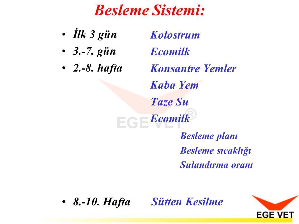 Besleme Sistemi: İlk 3 gün Kolostrum 3.-7. gün Ecomilk 2.-8. hafta