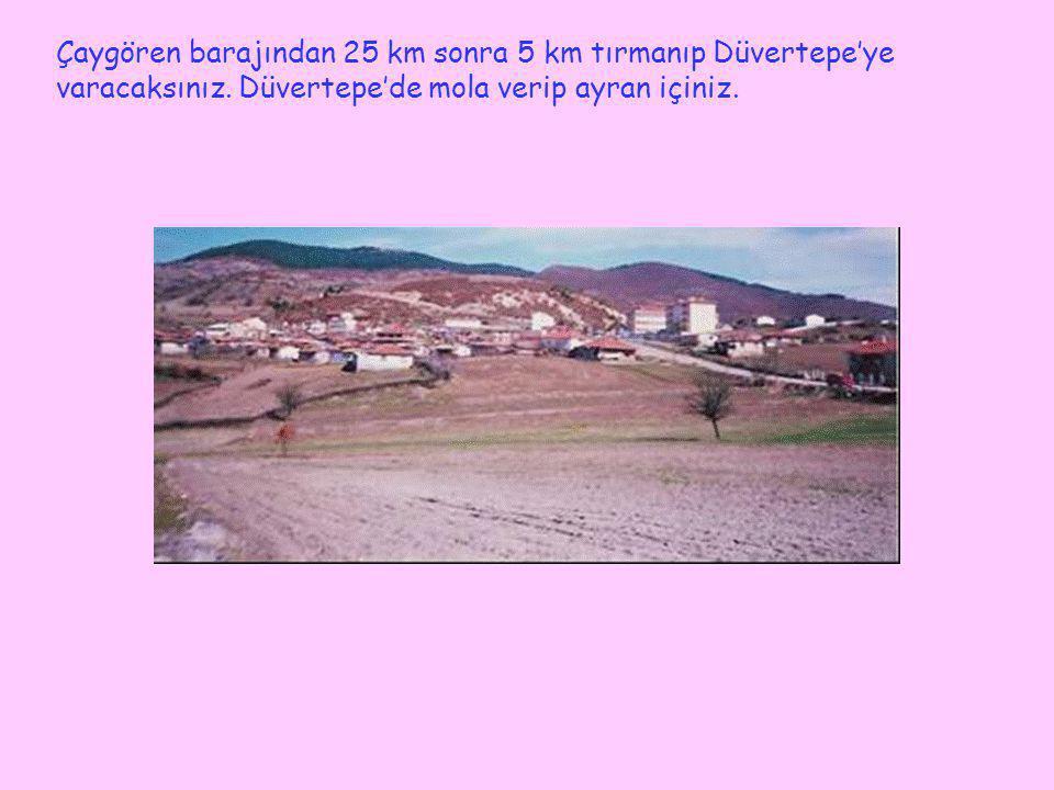 Çaygören barajından 25 km sonra 5 km tırmanıp Düvertepe'ye varacaksınız.