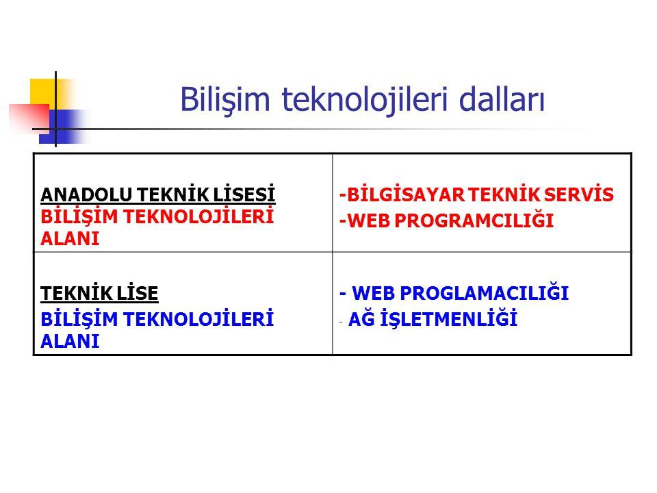 Bilişim teknolojileri dalları