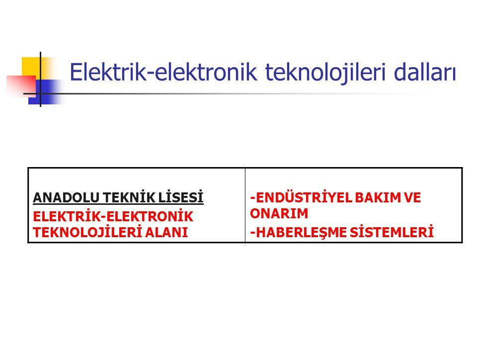 Elektrik-elektronik teknolojileri dalları