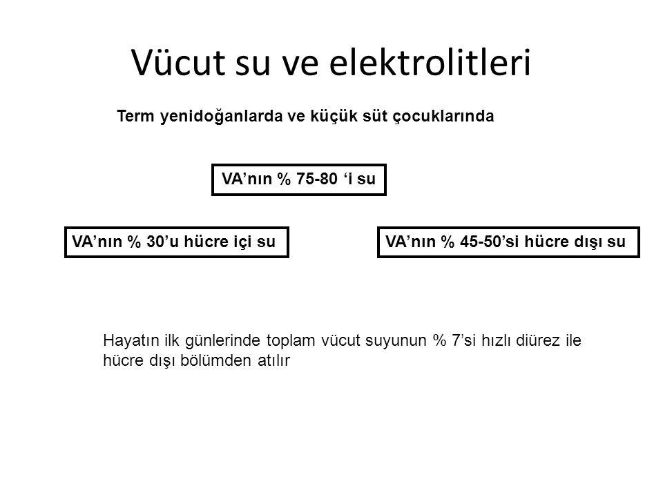 Vücut su ve elektrolitleri