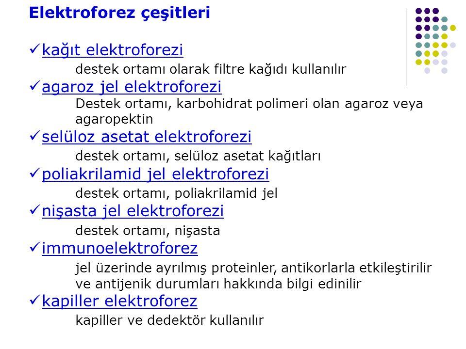 Elektroforez çeşitleri kağıt elektroforezi