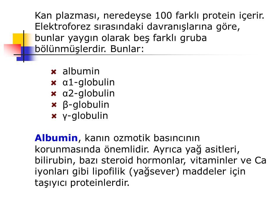 Kan plazması, neredeyse 100 farklı protein içerir