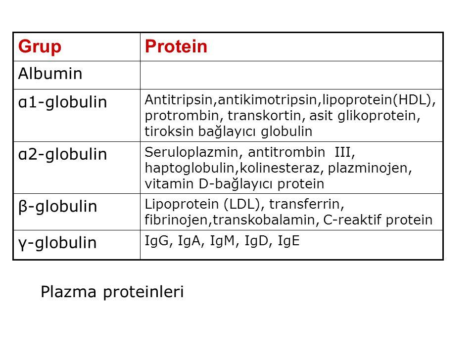 Protein Grup Albumin α1-globulin α2-globulin β-globulin γ-globulin