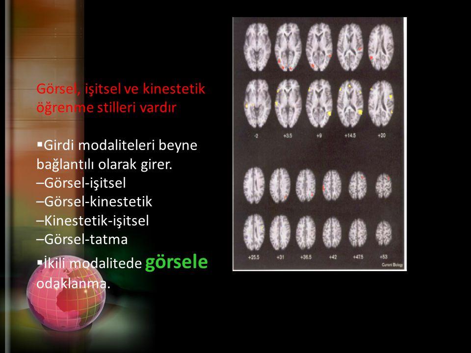 Görsel, işitsel ve kinestetik öğrenme stilleri vardır