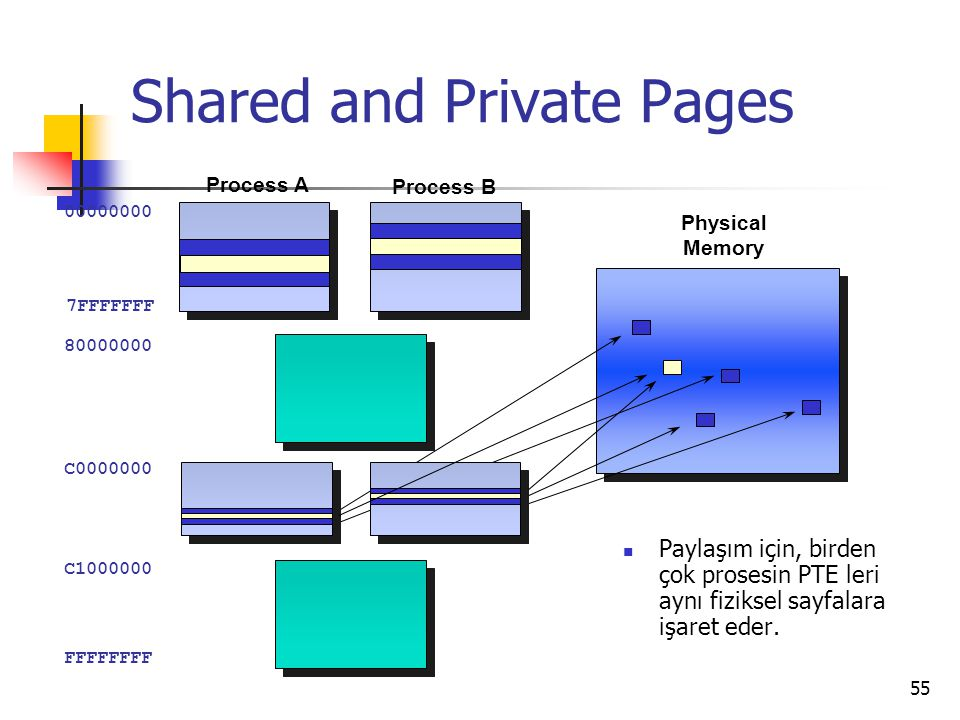 Shared and Private Pages