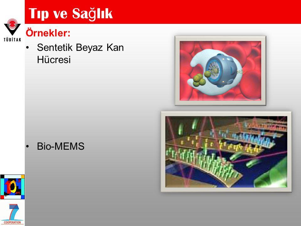 Tıp ve Sağlık Örnekler: Sentetik Beyaz Kan Hücresi Bio-MEMS