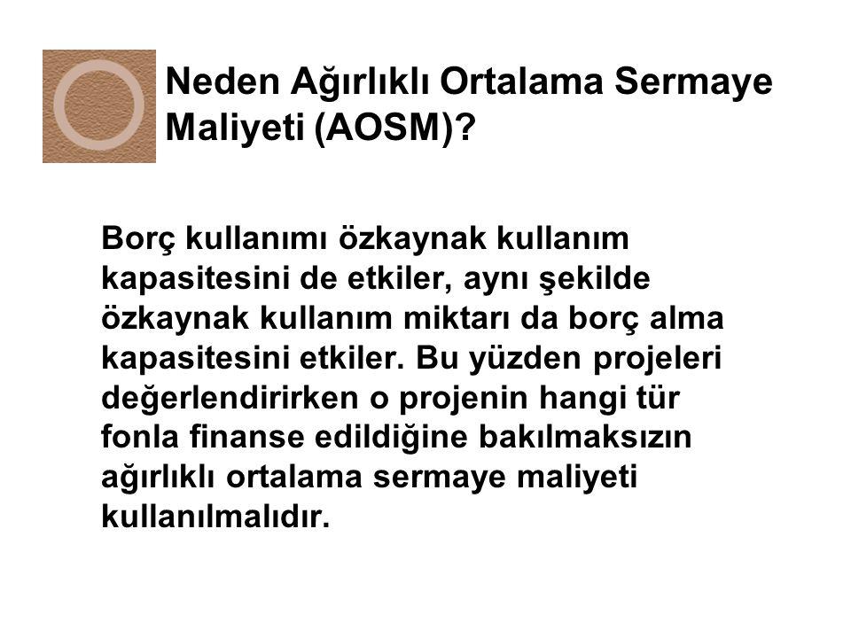 Neden Ağırlıklı Ortalama Sermaye Maliyeti (AOSM)