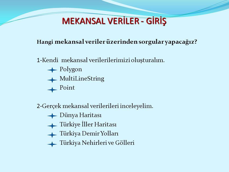 MEKANSAL VERİLER - GİRİŞ