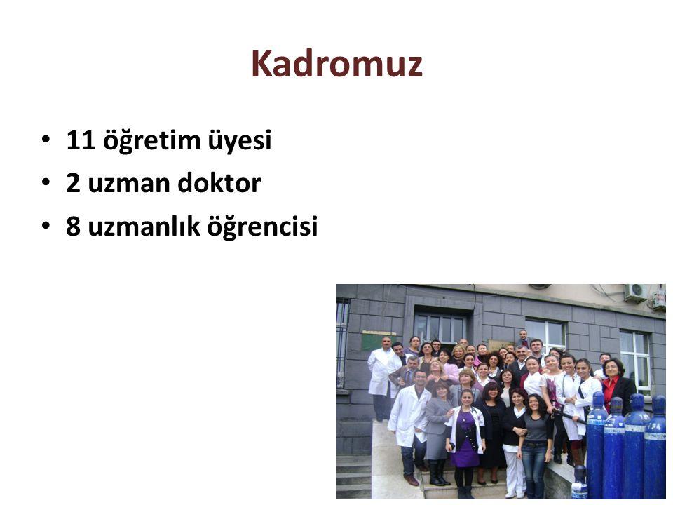Kadromuz 11 öğretim üyesi 2 uzman doktor 8 uzmanlık öğrencisi