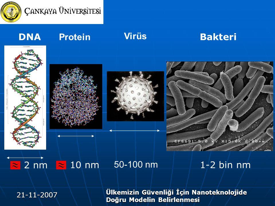 Protein DNA Virüs Bakteri 50-100 nm 1-2 bin nm 2 nm 10 nm 21-11-2007