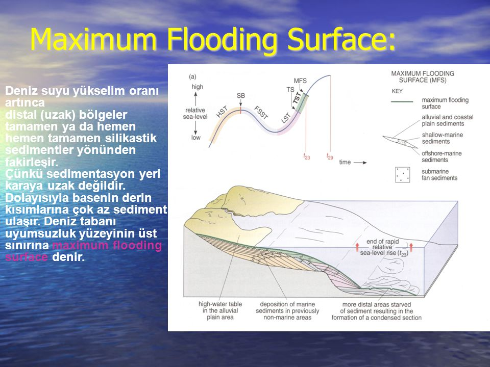 Maximum Flooding Surface: