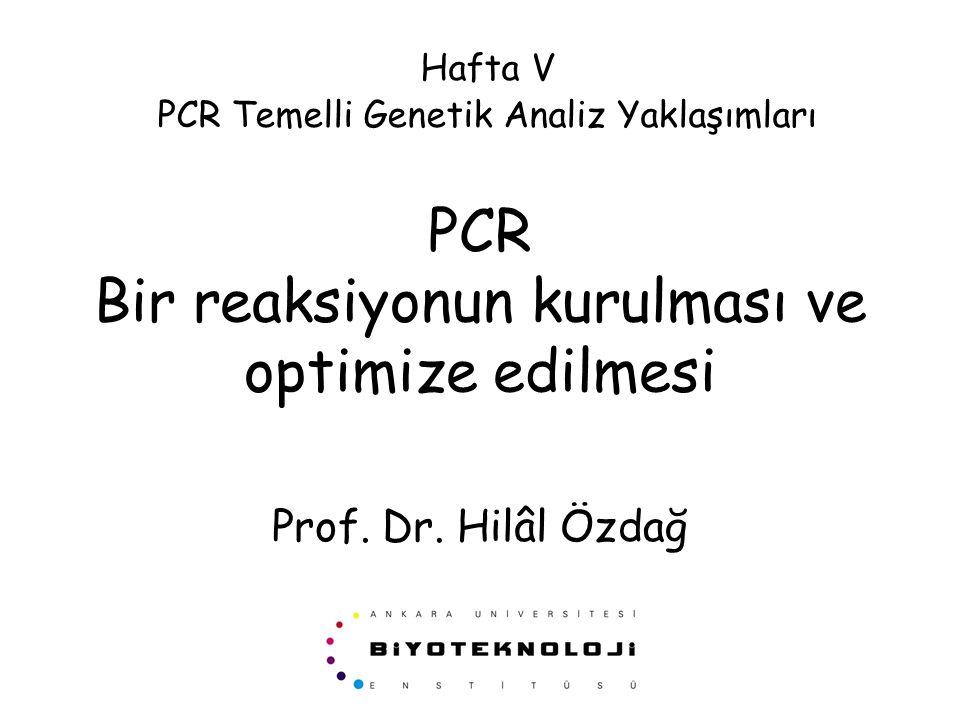 PCR Bir reaksiyonun kurulması ve optimize edilmesi