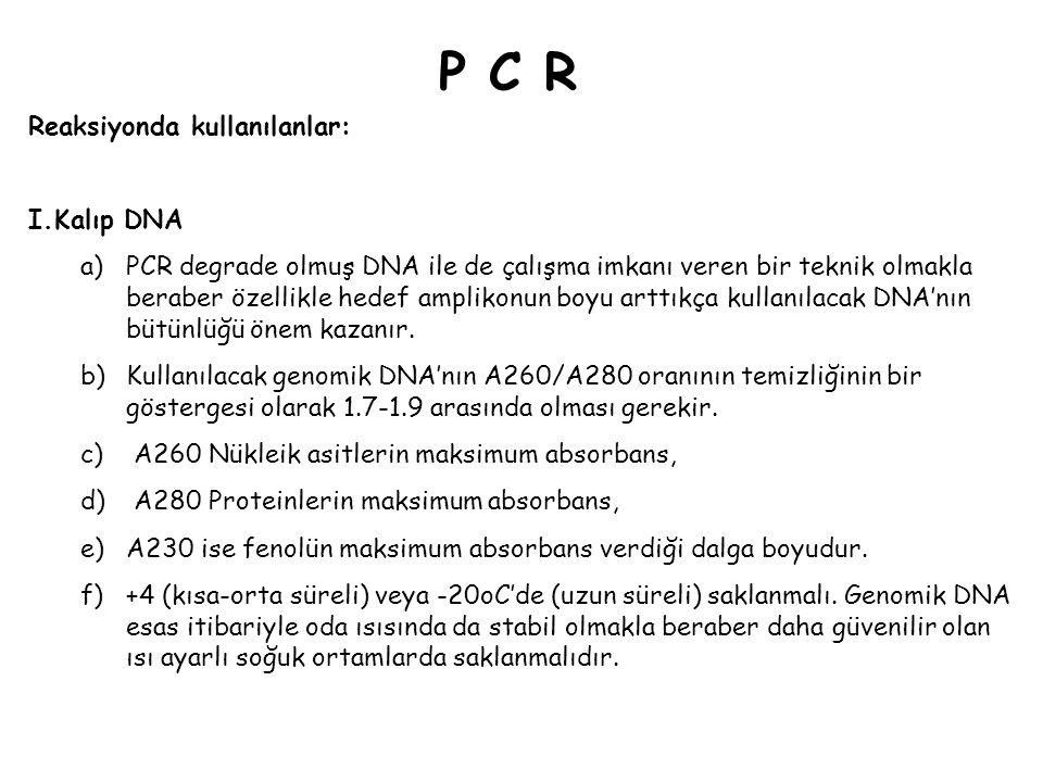 P C R Reaksiyonda kullanılanlar: Kalıp DNA