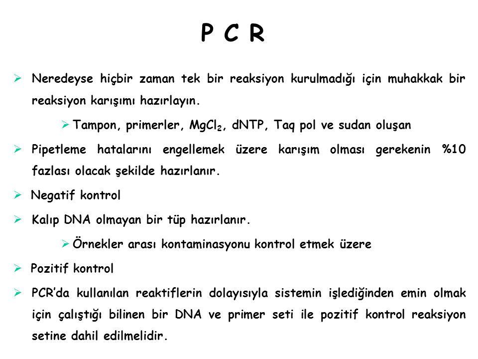P C R Neredeyse hiçbir zaman tek bir reaksiyon kurulmadığı için muhakkak bir reaksiyon karışımı hazırlayın.